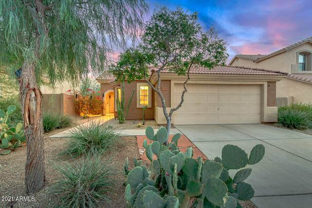 17555 W Dalea Drive, Goodyear, AZ 85338 (MLS #6181926) :: Sheli Stoddart Team | M.A.Z. Realty Professionals