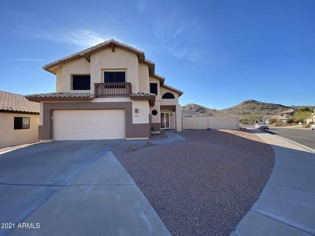 3851 E Thunderhill Place, Phoenix, AZ 85044 (MLS #6181972) :: The Property Partners at eXp Realty