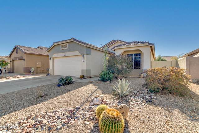45127 W Paitilla Lane, Maricopa, AZ 85139 (MLS #6182017) :: Executive Realty Advisors