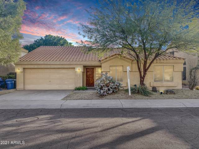 4339 E Brookwood Court, Phoenix, AZ 85048 (MLS #6182027) :: Power Realty Group Model Home Center