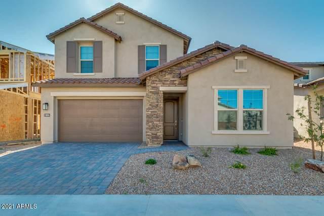 18316 N 65TH Place, Phoenix, AZ 85054 (MLS #6182038) :: The Carin Nguyen Team