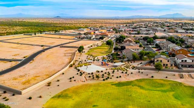24692 N Barley Circle, Florence, AZ 85132 (MLS #6182049) :: The Newman Team