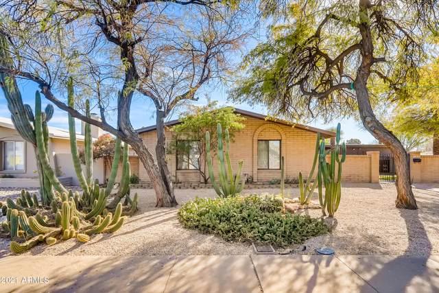 2423 W Paradise Drive, Phoenix, AZ 85029 (MLS #6182063) :: The Carin Nguyen Team