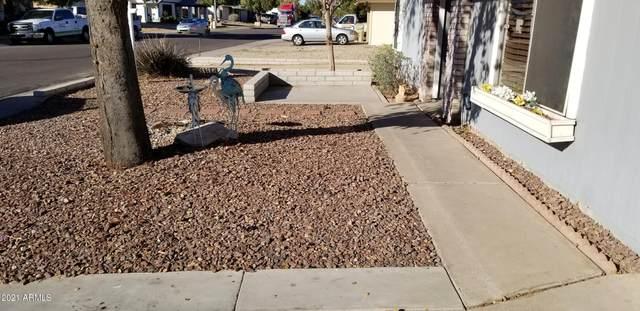 14817 N 60TH Avenue, Glendale, AZ 85306 (MLS #6182065) :: Arizona Home Group