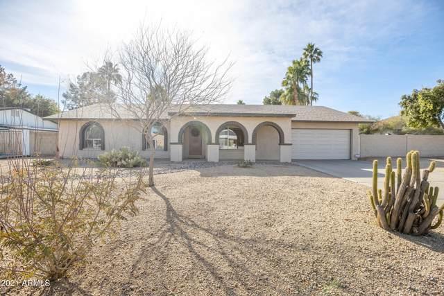 2801 E Vista Drive, Phoenix, AZ 85032 (#6182099) :: The Josh Berkley Team
