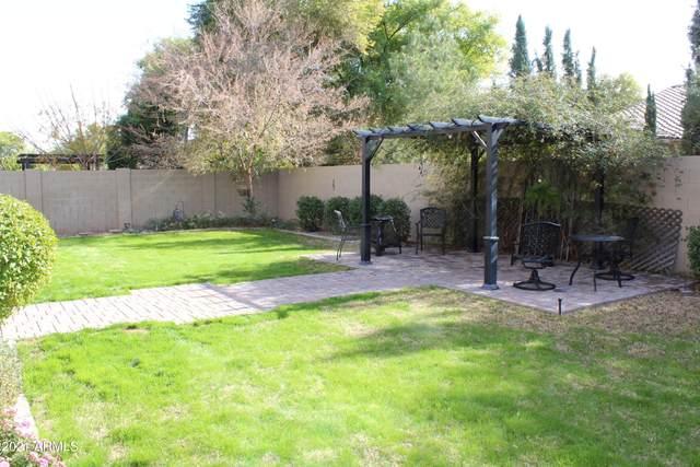 3067 E Maplewood Street, Gilbert, AZ 85297 (MLS #6182151) :: My Home Group