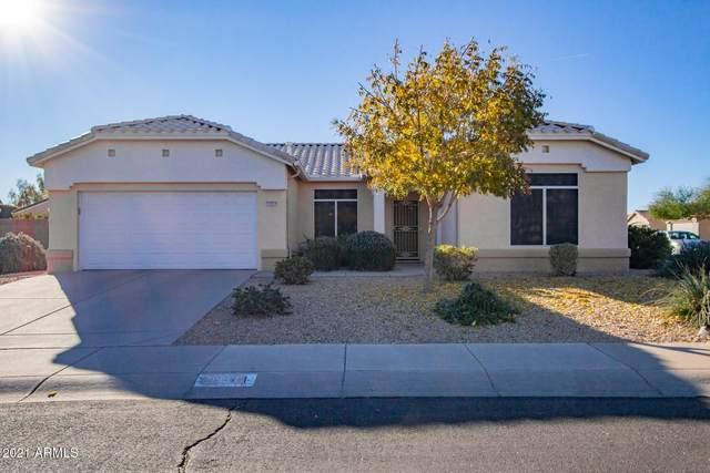 19201 N 138TH Avenue, Sun City West, AZ 85375 (MLS #6182176) :: My Home Group