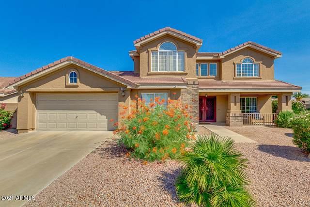 3360 E Wahalla Lane, Phoenix, AZ 85050 (MLS #6182183) :: Homehelper Consultants