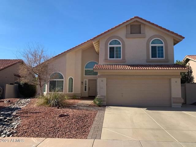 13608 S 37TH Street, Phoenix, AZ 85044 (MLS #6182250) :: Homehelper Consultants