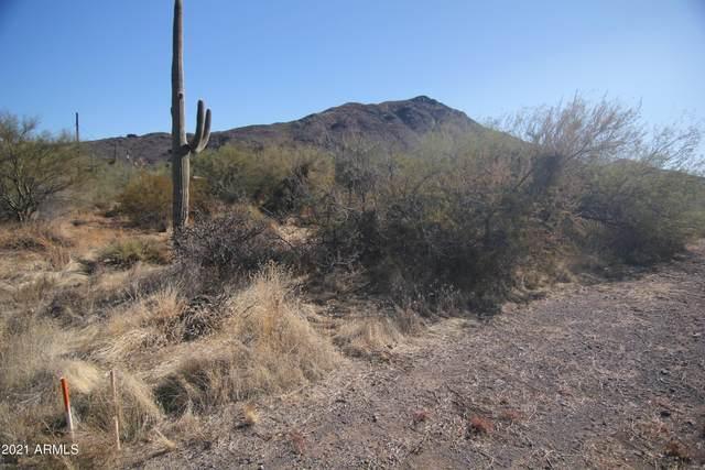 37205 N Cave Creek Road, Cave Creek, AZ 85331 (MLS #6182332) :: ASAP Realty