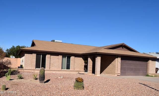 10548 W Laurie Lane, Peoria, AZ 85345 (MLS #6182404) :: Homehelper Consultants