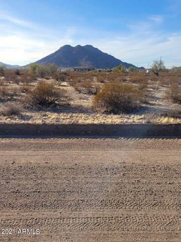 3952 N Branding Iron Road, Maricopa, AZ 85139 (MLS #6182430) :: Arizona 1 Real Estate Team