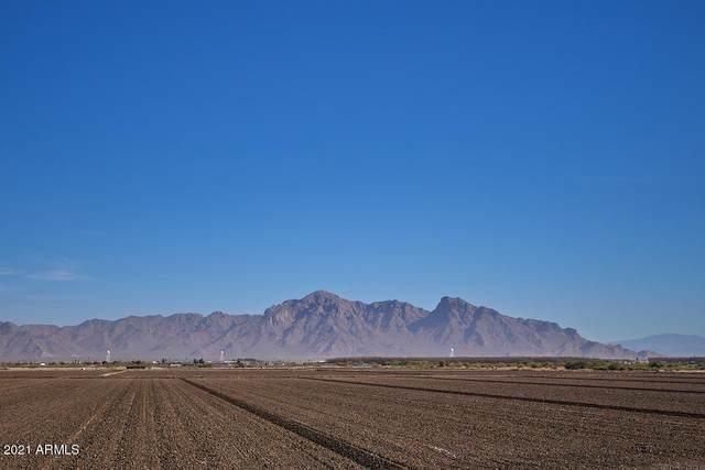 101 N Curiel Street, Eloy, AZ 85131 (MLS #6182437) :: Arizona 1 Real Estate Team