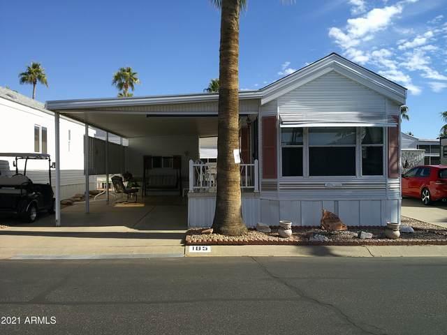185 S Mineshaft Drive, Apache Junction, AZ 85119 (MLS #6182483) :: My Home Group