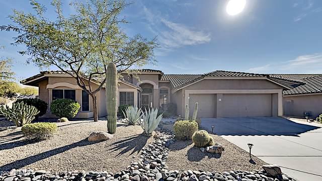 5019 E Armor Street, Cave Creek, AZ 85331 (MLS #6182590) :: The Property Partners at eXp Realty