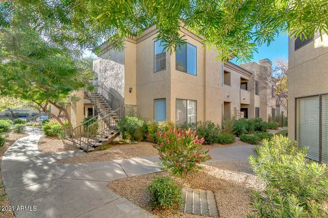 4925 E Desert Cove Avenue #204, Scottsdale, AZ 85254 (MLS #6182635) :: The Carin Nguyen Team