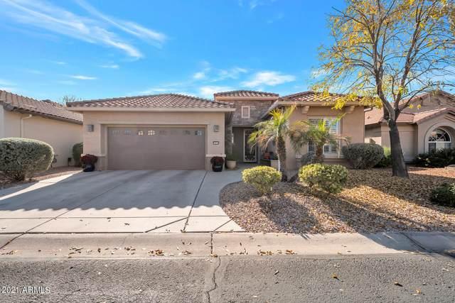 15713 W Roanoke Avenue, Goodyear, AZ 85395 (MLS #6182651) :: Devor Real Estate Associates
