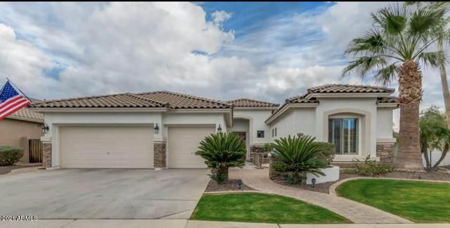 6730 S Rachael Way, Gilbert, AZ 85298 (MLS #6182675) :: Homehelper Consultants