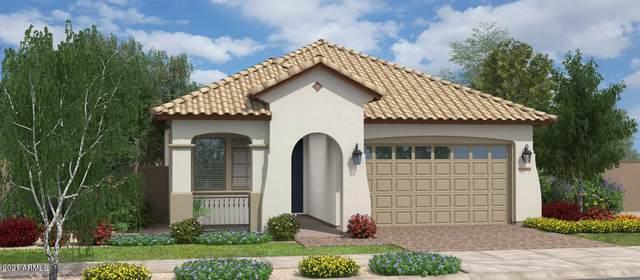 23143 E Thornton Road, Queen Creek, AZ 85142 (MLS #6182704) :: Arizona 1 Real Estate Team