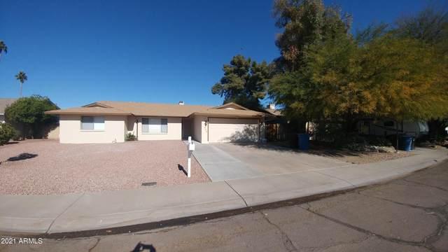 602 E Lodge Drive, Tempe, AZ 85283 (MLS #6182705) :: My Home Group