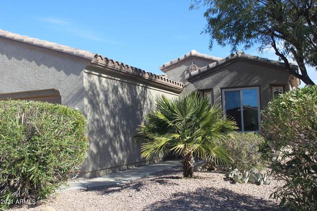 16733 W Villagio Drive, Surprise, AZ 85387 (MLS #6182706) :: Long Realty West Valley