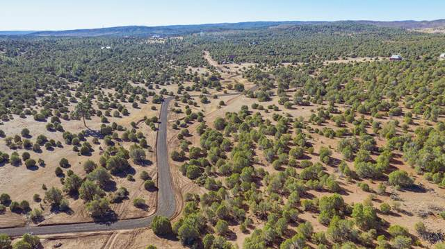 LOT 1 E Sunburst Lane, Clay Springs, AZ 85923 (MLS #6182711) :: Executive Realty Advisors