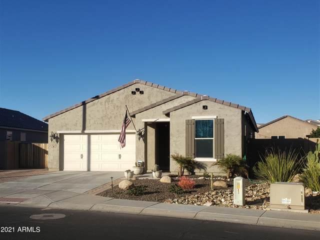 3028 W Thorn Tree Drive, Phoenix, AZ 85085 (MLS #6182766) :: Sheli Stoddart Team | M.A.Z. Realty Professionals