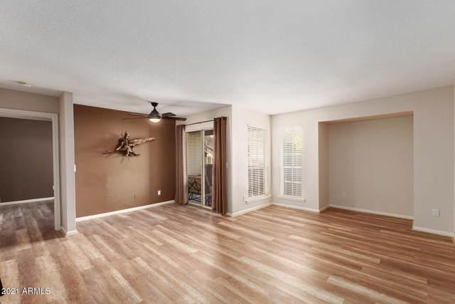 200 E Southern Avenue #257, Tempe, AZ 85282 (MLS #6182806) :: Keller Williams Realty Phoenix