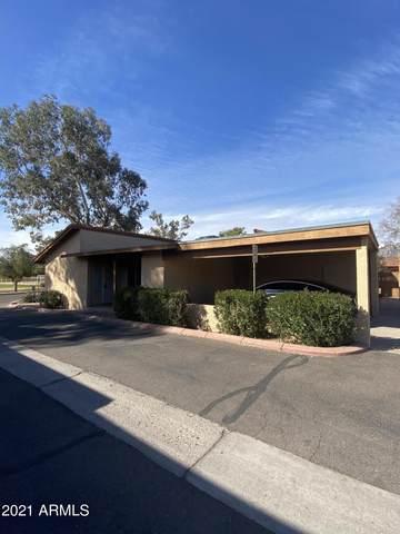 14801 N 25TH Drive #12, Phoenix, AZ 85023 (MLS #6182854) :: Arizona 1 Real Estate Team