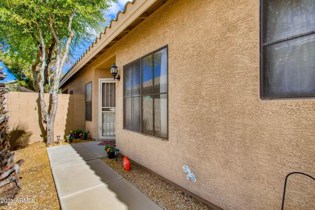 8862 W Laurel Lane, Peoria, AZ 85345 (MLS #6182861) :: Midland Real Estate Alliance