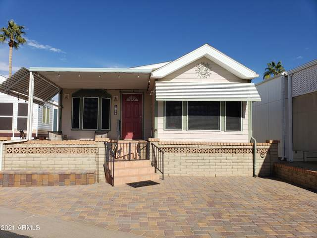 2359 S Pomo Avenue, Apache Junction, AZ 85119 (MLS #6182883) :: Nate Martinez Team