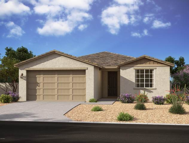 13341 W Tether Trail, Peoria, AZ 85383 (MLS #6182884) :: Midland Real Estate Alliance