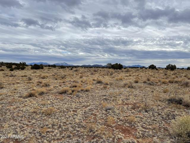 3153 E Judy Drive, Williams, AZ 86046 (MLS #6182889) :: The Riddle Group