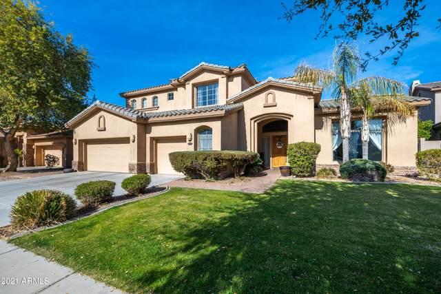 4768 E Ironhorse Road, Gilbert, AZ 85297 (MLS #6182892) :: Yost Realty Group at RE/MAX Casa Grande
