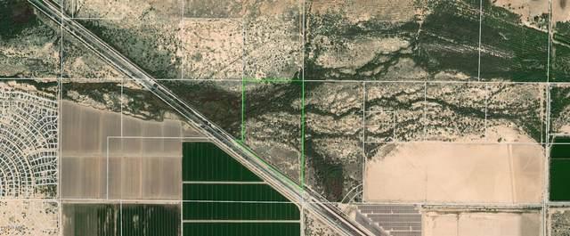 0 W Ethington Road, Casa Grande, AZ 85193 (MLS #6182901) :: Fred Delgado Real Estate Group