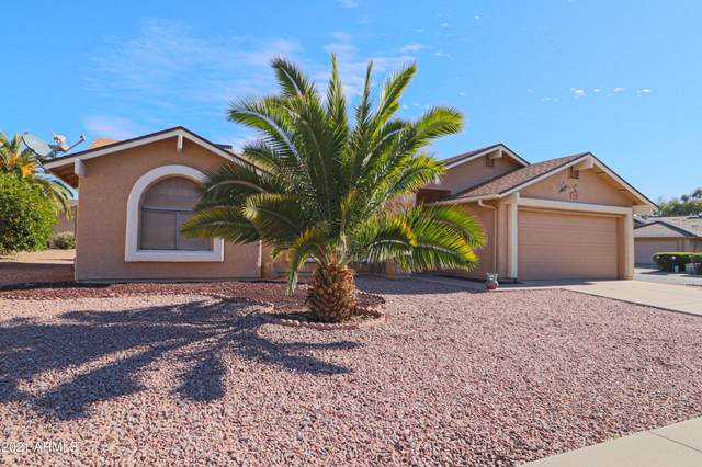2218 Leisure World, Mesa, AZ 85206 (MLS #6182918) :: Midland Real Estate Alliance