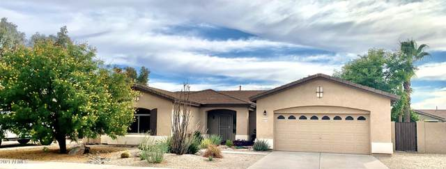21279 E Alyssa Road, Queen Creek, AZ 85142 (MLS #6183021) :: The Everest Team at eXp Realty