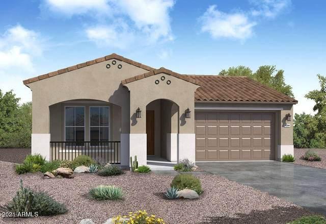 29520 N 113TH Lane, Peoria, AZ 85383 (MLS #6183036) :: Midland Real Estate Alliance