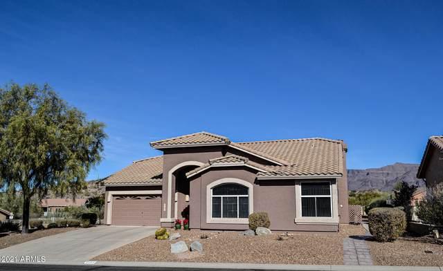 8684 E Golden Cholla Drive, Gold Canyon, AZ 85118 (MLS #6183069) :: Dijkstra & Co.