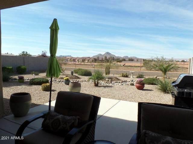 35244 N Zachary Road, Queen Creek, AZ 85142 (MLS #6183126) :: Conway Real Estate