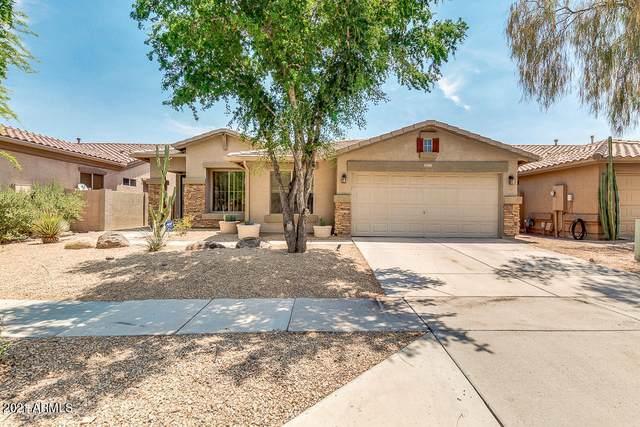 35405 N 34th Avenue, Phoenix, AZ 85086 (MLS #6183165) :: Keller Williams Realty Phoenix