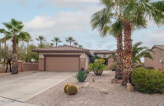 16405 W Peppertree Court, Surprise, AZ 85387 (MLS #6183167) :: Devor Real Estate Associates