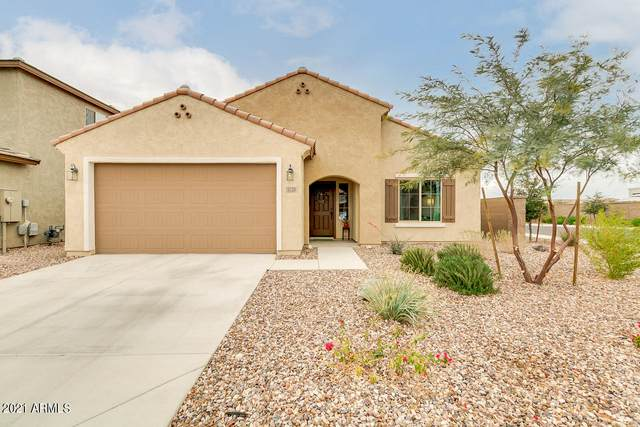 5728 W Autumn Vista Way, Florence, AZ 85132 (MLS #6183255) :: Sheli Stoddart Team | M.A.Z. Realty Professionals