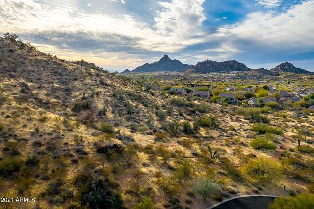 27728 N 113TH Place, Scottsdale, AZ 85262 (MLS #6183270) :: Yost Realty Group at RE/MAX Casa Grande
