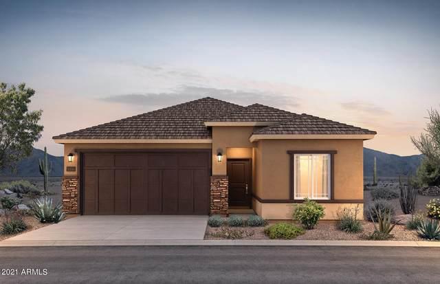 43798 W Acacia Avenue, Maricopa, AZ 85138 (MLS #6183327) :: Yost Realty Group at RE/MAX Casa Grande