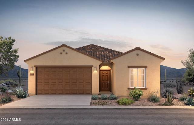 43693 W Juniper Avenue, Maricopa, AZ 85138 (MLS #6183332) :: Sheli Stoddart Team | M.A.Z. Realty Professionals