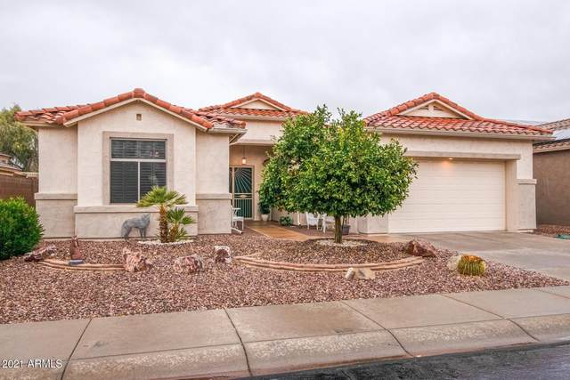 18038 W Sammy Way, Surprise, AZ 85374 (MLS #6183348) :: The Property Partners at eXp Realty