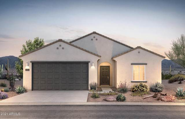 43781 W Windrose Drive, Maricopa, AZ 85138 (MLS #6183352) :: Yost Realty Group at RE/MAX Casa Grande