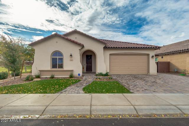 1161 W Spine Tree Avenue, San Tan Valley, AZ 85140 (MLS #6183364) :: The Helping Hands Team