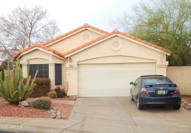 16042 N 4TH Drive, Phoenix, AZ 85023 (MLS #6183407) :: The Helping Hands Team